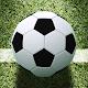 Soccer Championship-Freekick Download on Windows