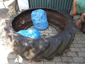 Photo: a zöldhulladékos kék zsákok támasztékok voltak a vágás során https://www.facebook.com/reginakertgodollo