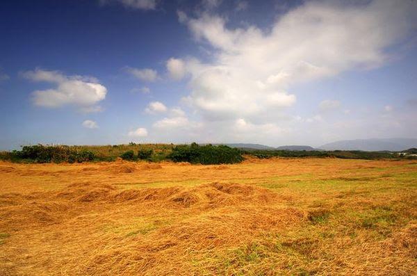 土地持分貸款 土地二胎貸款 農地貸款專業辦理 元天貸款公司 0975-701-666 張代書
