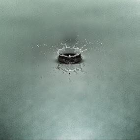 Liquid by Brian Wilson - Abstract Water Drops & Splashes ( water, canon, liquid, splash, metal, drop, silver, beautiful, beauty, fast, nikon, water drop )