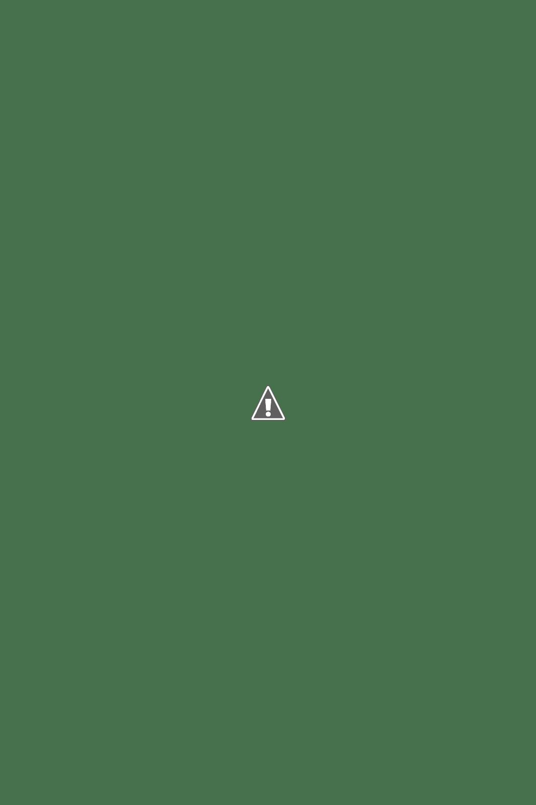 台北市捷運中山站優質餐廳分享【Don-tei壽喜燒】高品質的菜色及服務~聚餐、約會帶客戶來都無懈可擊! @秤瓶樂遊遊