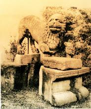 Photo: Fig. 18. Leone di Val Vidone, Firenze, Museo Archeologico.