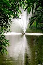 Photo: Avon River fountain, Stratford