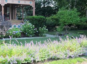 Photo: Laventelia ja hortensioita oli tälläkin saarella paljon