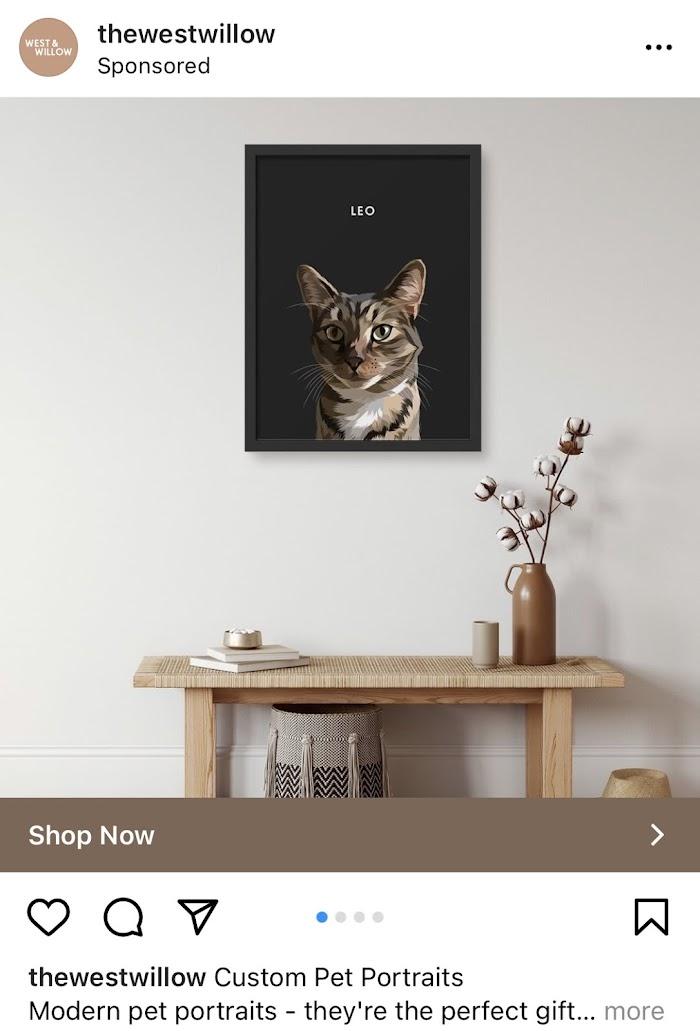 West Willow pet portrait ad.