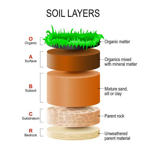 Soil is the thin layer of material covering the earth's surface