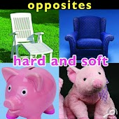 Opposites: Hard and Soft
