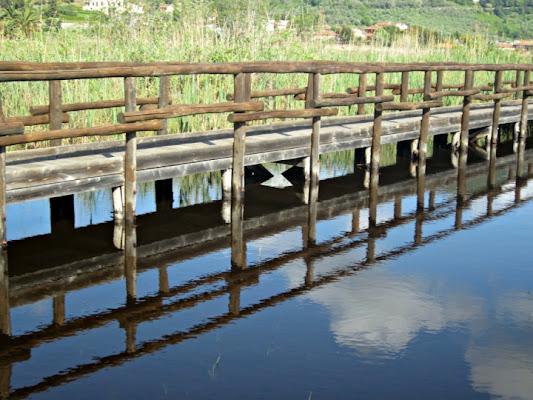 Sentiero nell'acqua di cristina_urbini