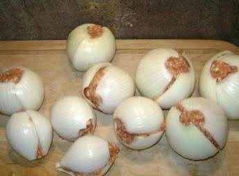 Onion Bombs Camping Food Or Just Out In The Back Yard.. Recipe
