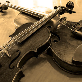 Two Violins by Danny Andreini - Artistic Objects Musical Instruments ( music, violins, black and white, sound, musical instruments )
