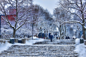 Photo: Memory of Winter Snow and University of Oslo  冬の思い出 雪とオスロ大学キャンパス内
