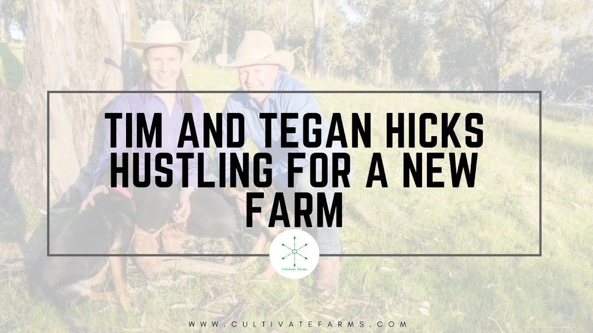 Tim and Tegan Hicks hustling for a new farm