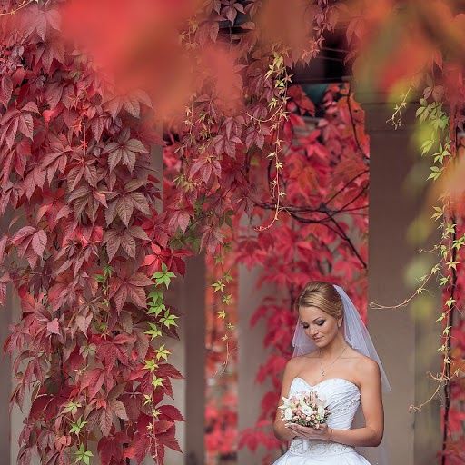 Wedding photographer Yuriy Gusev (yurigusev). Photo of 21.09.2013