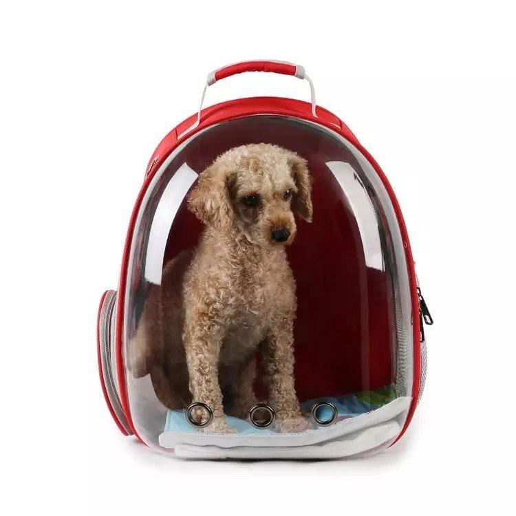 Top 7 mẫu balo cho chó giá rẻ, bền, đẹp và cute nhất 2020