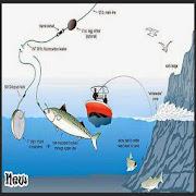 fiskersknoten