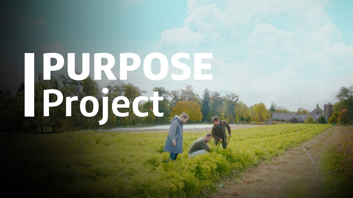 Watch Purpose Project: The Series live