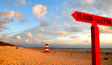 Photo: Hai Alarm in Dänemark  Photo of the Day.