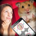Translator Hamster. Joke icon