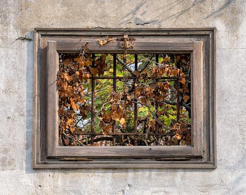 L'autunno è alle porte, anzi alla finestra! di Giovi18