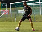 Le jeune belge Rob Nizet quitte Norwich City pour l'Italie