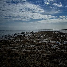 Low Tides by Richard Gatmaitan - Landscapes Beaches