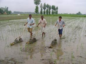 Photo: India- Punjab