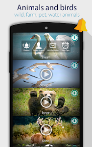 Animals: Ringtones screenshot 4