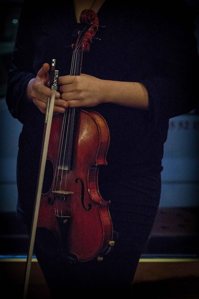 Il volto della musica di Elena Sbrogiò