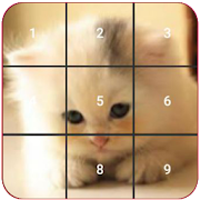 Cat puzzles Jigsaw & Slide Free Games 2019