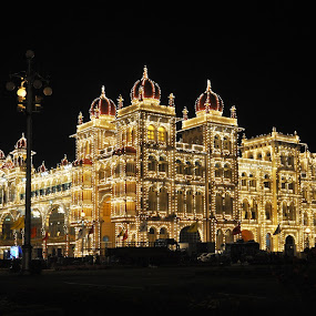 Palace at night by B Thottoli - Travel Locations Landmarks ( , night, lights, mood factory, color, lighting, moods, colorful, light, bulbs, mood-lites )