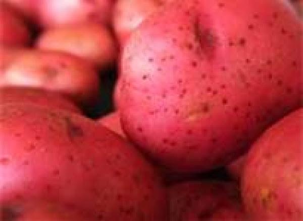 Red Potato Casserole Recipe