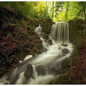 Birr Castle Waterfall  by Helen Quirke  - Landscapes Waterscapes ( co. offaly, waterfalls, autumn leaves, autumn colours, birr castle,  )