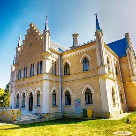 Prince Cuza's palace by Radu Eftimie - Buildings & Architecture Public & Historical ( ruginoasa, cuza's palace, romania )
