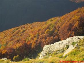 Photo: IMG_3976 i colori dell autunno sull appennino reggiano dal 607