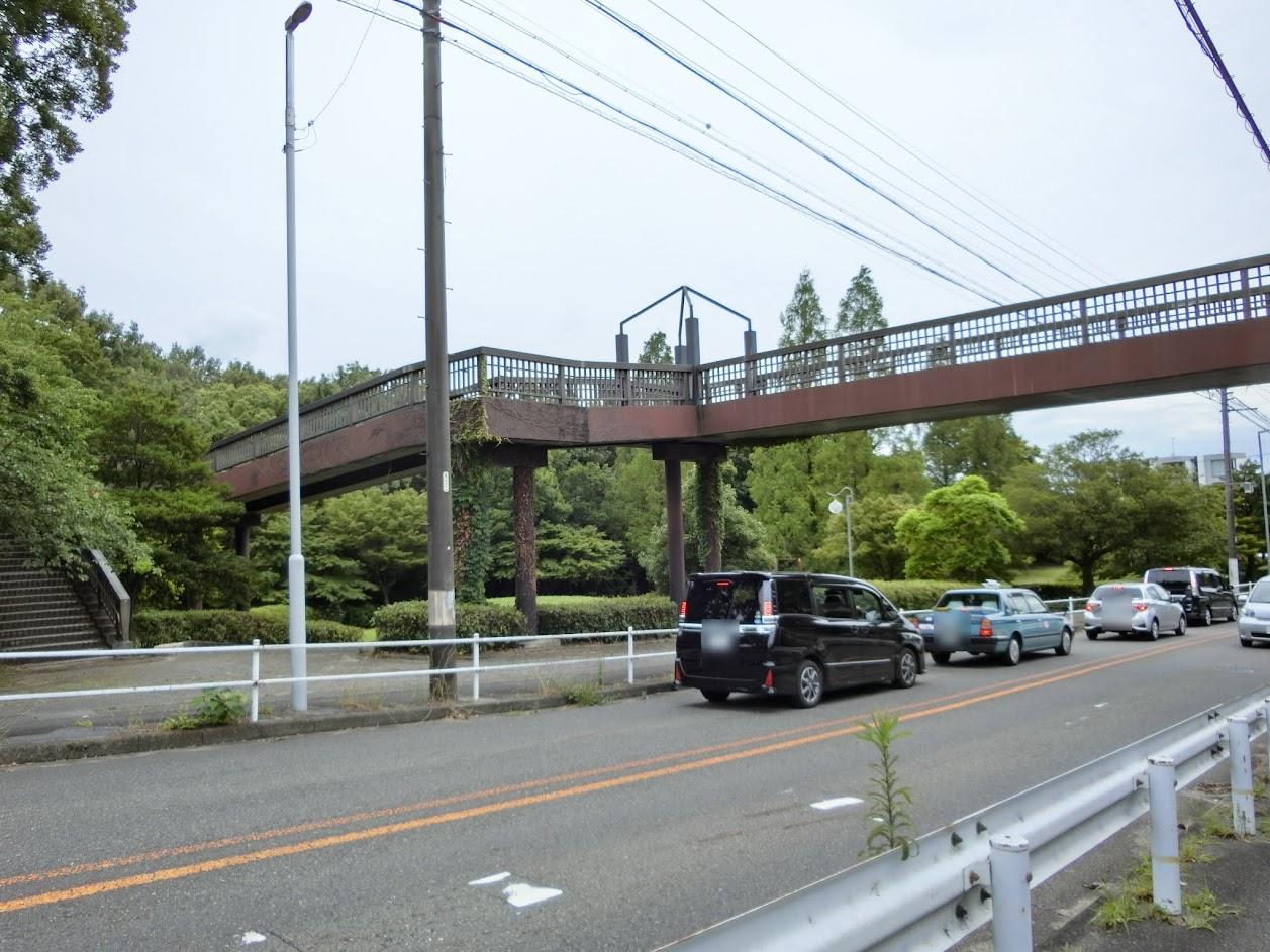 茶屋ヶ坂公園あじさい橋