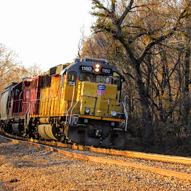 LVR-61 South Local by Rick Covert - Transportation Trains ( railroad, locomotive, arkansas, railroad tracks, arkansas photographer, trains )