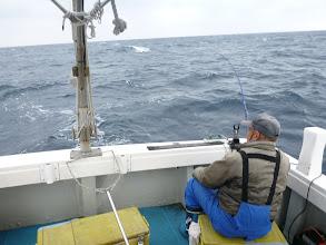 Photo: 相変わらず、よく釣ります!