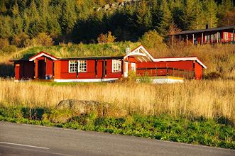 Photo: Haus mit begrüntem Dach