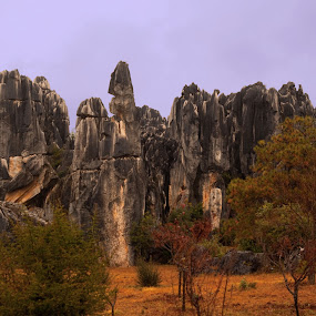 Stone Knives  and Swords by Xiufen Gu - Landscapes Caves & Formations ( yunnan, stone,  )