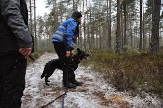 Photo: Jan Ståle og Boo