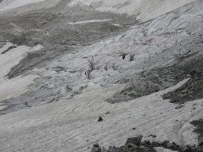Photo: ледник