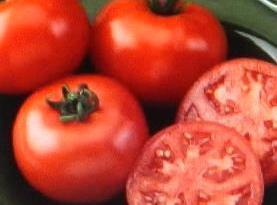 Tomatoe  Tips Recipe
