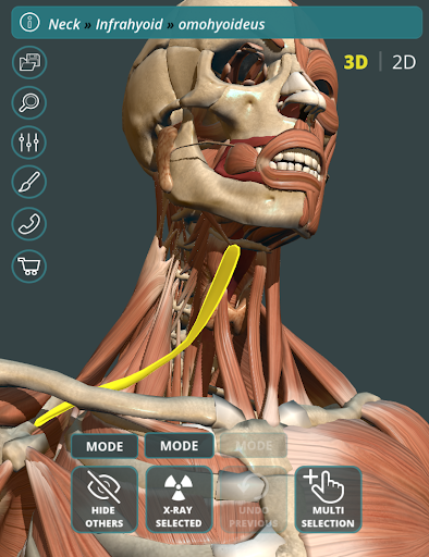 玩免費醫療APP|下載Visual Anatomy 3D | Human app不用錢|硬是要APP
