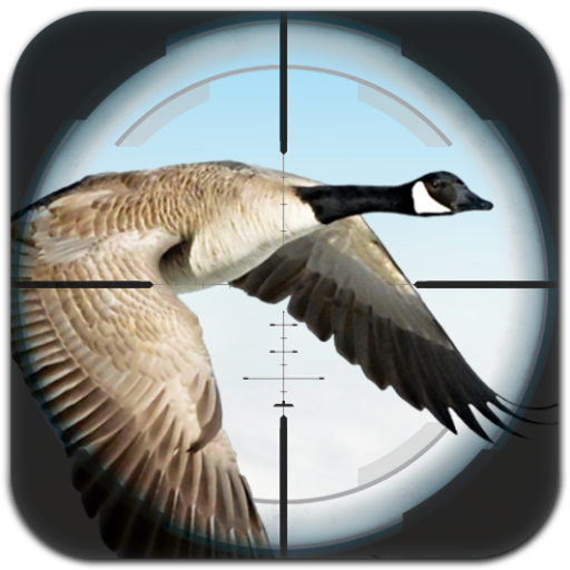 Flying Bird Hunting 冒險 LOGO-玩APPs