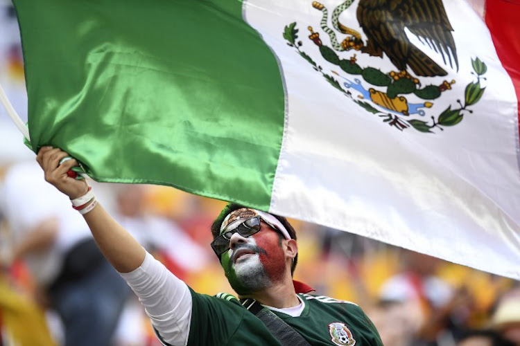A Mexico's fan waves a Mexican national flag. File photo.