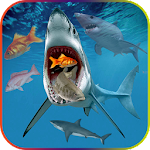Hungry Shark Attack Evolution Simulator 3D Icon