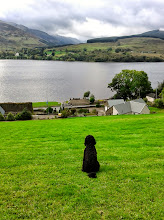 Photo: Last minute pet friendly short break?  Cottage on Loch Earn for 2-4 with fishing in the garden. 4 nights left in April 22-26 at £315 - your dog goes free. Visit www.stayatbriar.co.uk or tel 07917 416 497- Lochearnhead, Central Scotland