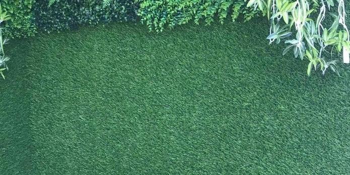 Bằng cách nào để biết Thảm cỏ nhựa thế nào là kém chất lượng