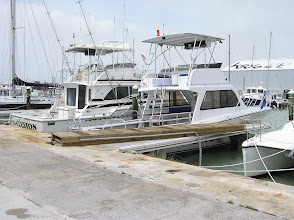 Photo: The dock's on the dock!