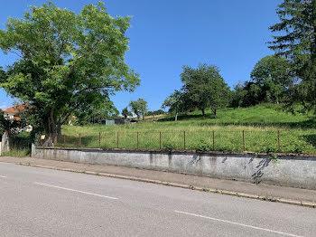 terrain à Adaincourt (57)